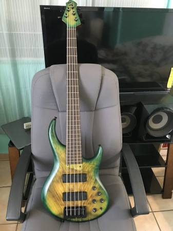 Photo Amazing MTD 535-24 Bass 5 String Mike Tobias - $3,600 (Norton)