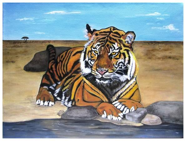 Photo Bengal Tiger - $40 (Rehoboth, MA)