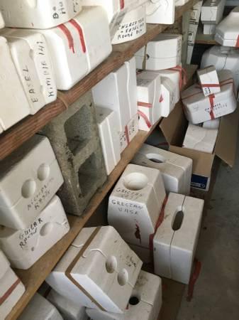 Photo Ceramic molds - shed full-  Kiln - $750 (Blue Eye)
