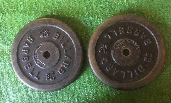 Photo Weider BIG 25lb weight plates - $3 (Statesboro)
