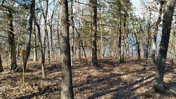 Photo Lake Front Lot, On Pomm - $25000 (Lake Forest)