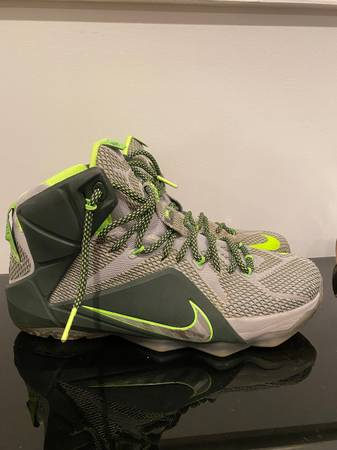 Photo Nike Lebron The Twelve Gray and Green Size 10 - $90 (annandale)