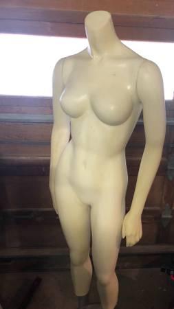 Photo Mannequin (female) - $75