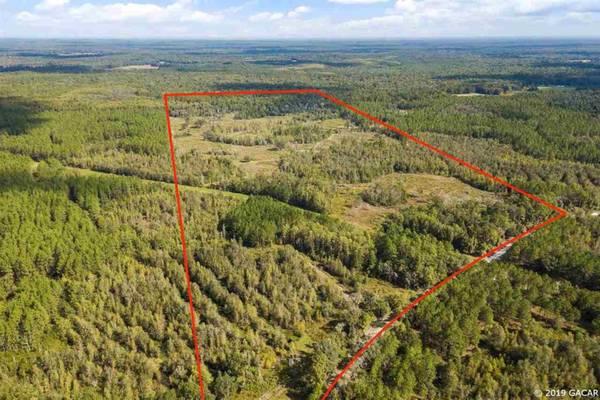 Photo Florida, acreage (14100-60 SW Mount Gilead Rd)