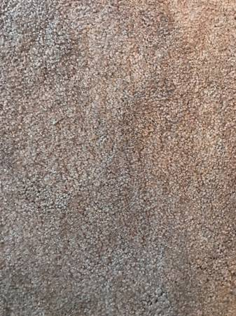 Photo Carpet remnant new beige - $50 (Rochester)