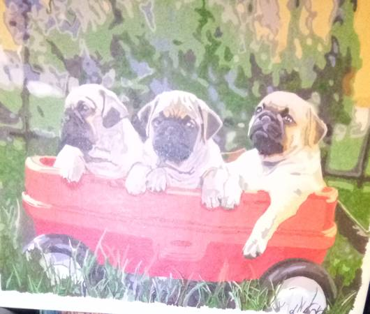 Photo Pug puppies in a red wagon PBN - $25 (Holton)
