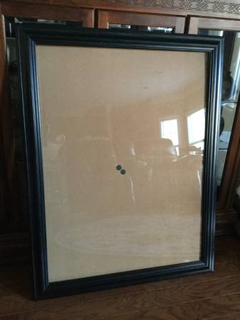 Photo Designer Frame for Portrait Picture  Poster,Art Wood With Glass Front - $30 (knoxville)