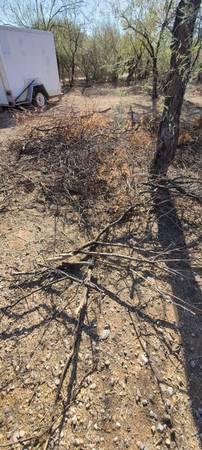 Photo Free Mesquite wood (small diameter) (Twin Peaks  Sandario in Marana)