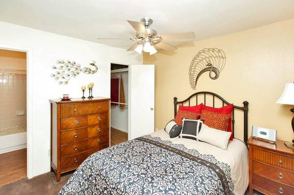 Photo Spacious One Bedrooms Starting at $600. Call Us Today (6161 E Pima St Tucson, AZ)