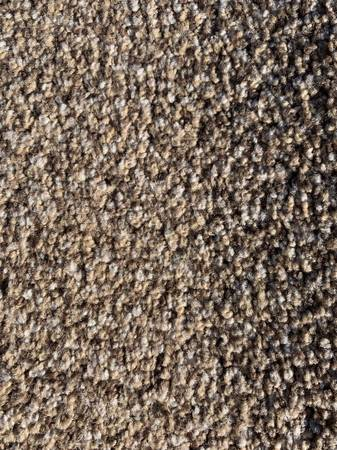 Photo Carpet Remnant - $50 (Kuna)