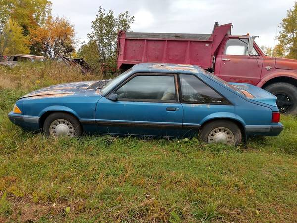 Photo 1988 Ford Mustang - $650 (Pelkie)