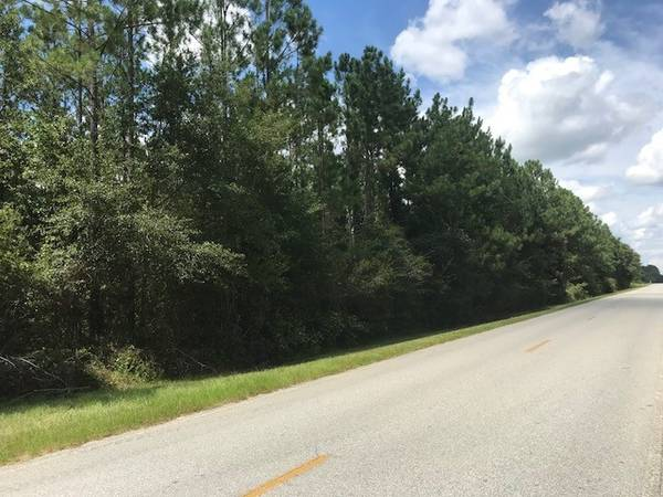 Photo 2.66Acres on paved road (River Road, Lanier County, GA)