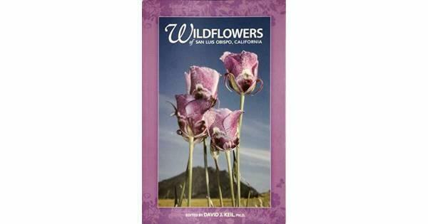 Photo Wildflowers of San Luis Obispo, CA - $10 (San Luis Obispo)