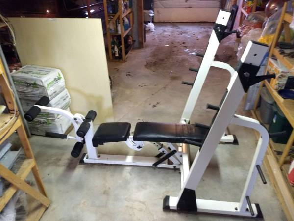 Photo Nautilus Strength Station weight bench and squat rack - $100 (Lyons Falls)