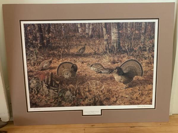 Photo Centennial Ruffed Grouse By Owen J. Gromme Limited Edition - $100 (Rhinelander)