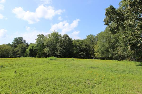 Photo 44.94 Acres (830 COOLEY FORD RD. TENNESSEE RIDGE)