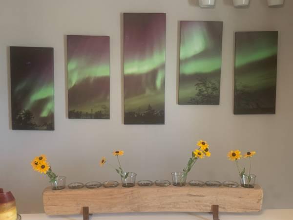 Photo Northern Lights Art - $65 (Grand Juntion)