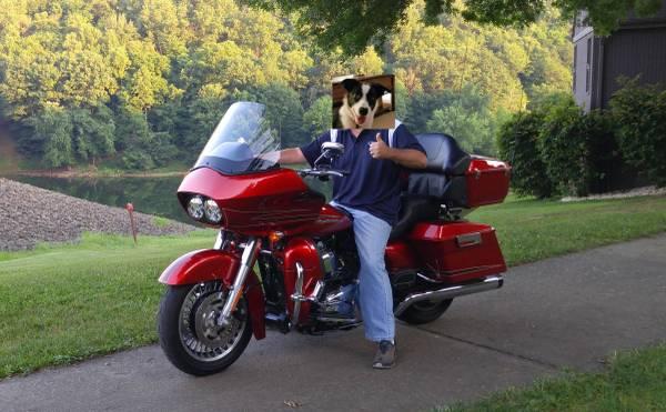 Photo 2013 Harley Davidson Road glide Ultra - $13,500 (Delmont)