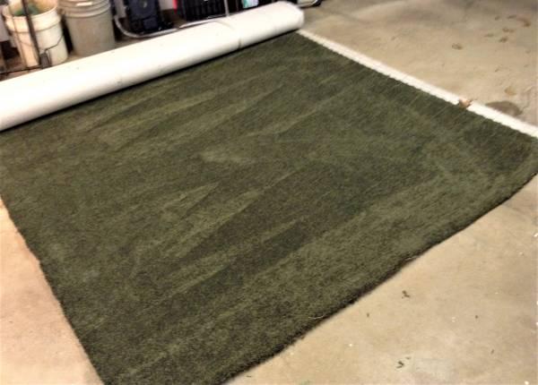 Photo Carpet Remnant - $50 (Wheeling)