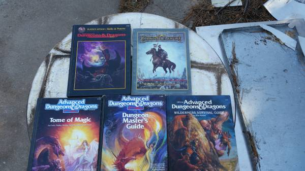 Photo Dungeons  Dragons Package - $175 (wichita)