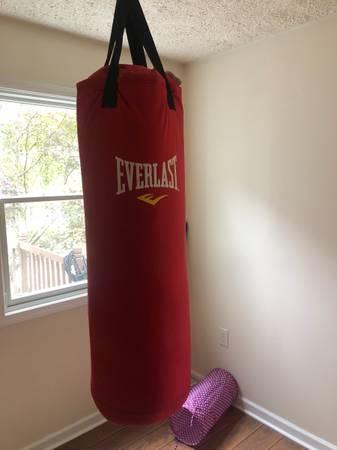Photo Everlast 80lb heavy bag - $100 (sacramento)