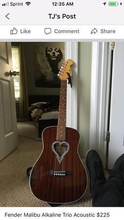 Fender Alkaline Trio Malibu Mahogany Natural | Reverb