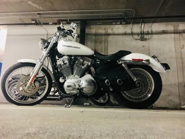 Photo Harley Sportster 883 custom xl - $3,000 (DMV)