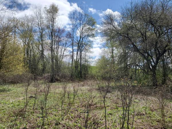 Photo Four lots for the price of one Lot Bundle For Sale (North Brookfield)