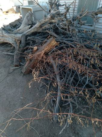 Photo Mesquite wood Free (Yuma)