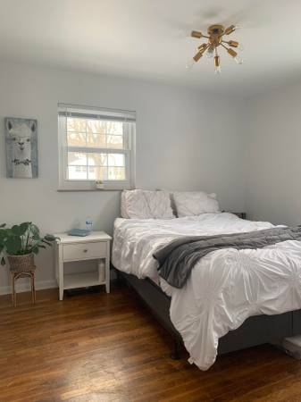 Photo Looking for young professional female roommate (Upper Arlington)